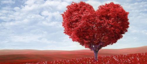 Oroscopo, classifica sull'amore di giugno: Capricorno e Cancro sulle note dell'amore