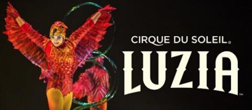 'Luzia' by Cirque du Soleil is an absolutely dazzling show. / Image via Cirque du Soleil, used with permission.