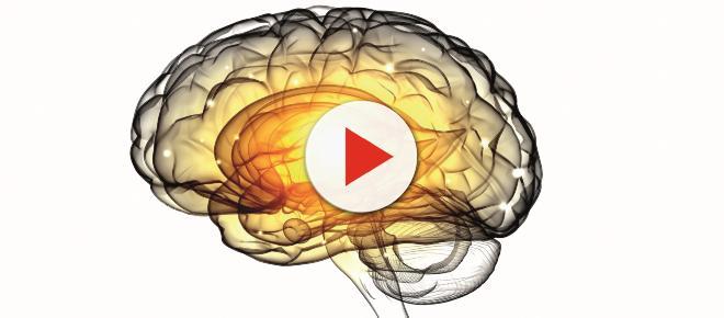 La gingivitis y el Alzheimer podrían estar relacionadas, según la revista Science Advances