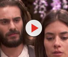 Isaac sarà geloso di Elsa Laguna e Alvaro Fernandez.