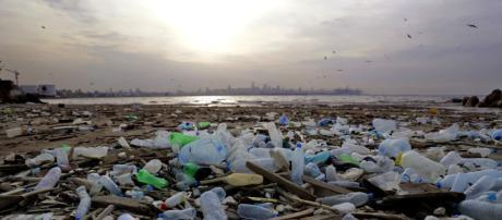 Pacifique : le continent de plastique fait trois fois la taille de ... - rtl.fr
