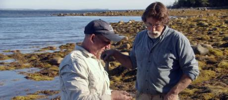 Is season 7 going be the last for The Curse of Oak Island? Will ... - vidmid.com