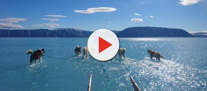 Una fotografía muestra las graves consecuencias del cambio climático en Groenlandia