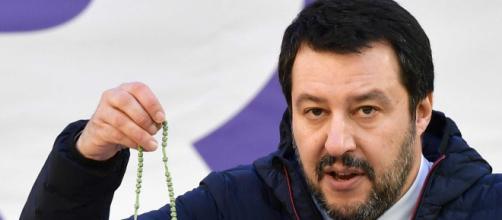 Matteo Salvini candidato a premio nobel per la pace: la proposta di Afd