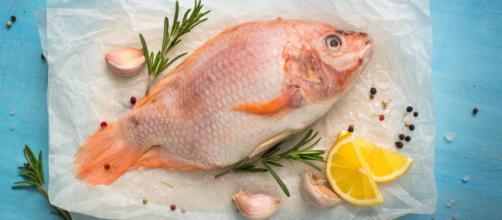 Pescados y mariscos aportan valiosos nutrientes para la salud. - mariscosapolo.com