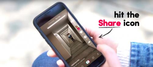 React with TikTok on videos shared is fun and stress-free - Image credit- YouTube/TikTok