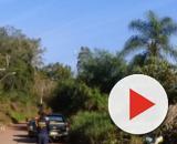 O corpo foi encontrado em meio a entulhos na estrada. (Divulgação/Polícia Civil)
