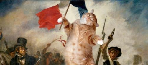 le chat guidant le peuple - Photo publiée sur le compte Instagram fatcatart