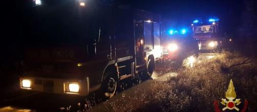 Brindisi, notte di fuoco nelle campagne: distrutti oltre 100 alberi di ulivo