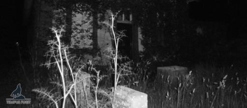 La Maison Glauque | Tempus Fugit - tempus-fugit.fr