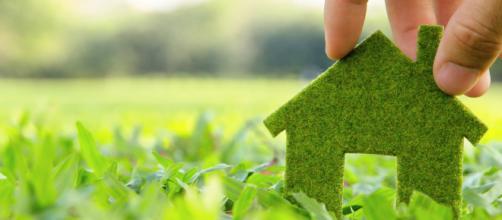 Sencillas acciones para cuidar el medio ambiente desde casa