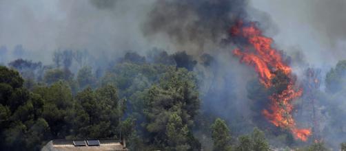 Se organiza una campaña para ayudar a un ganadero afectado por los incendios en Tarragona