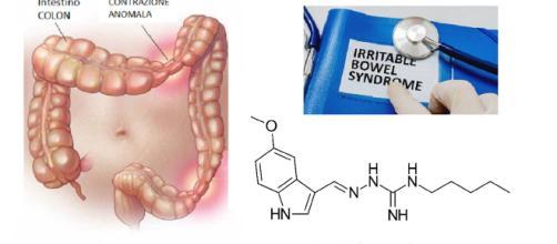 Acquisito da Alfasigma USA un farmaco, per ora destinato al mercato statunitense, per il trattamento della IBS-C.