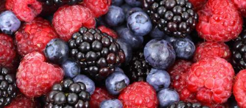 Las moras poseen excelentes propiedades nutricionales.