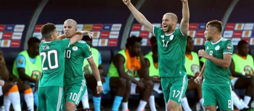 Argelia quiere ganar su 2da Copa Africana. - observalgerie.com