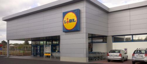 Lidl cerca addetti vendita, commessi specializzati e operatori di filiale in tutta Italia.