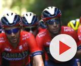Vincenzo Nibali attorniato dai compagni al Tour de France