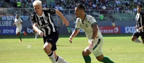 Figueira atropelou Coelho no Horto. (Divulgação/ Daniel Hott/ América MG)