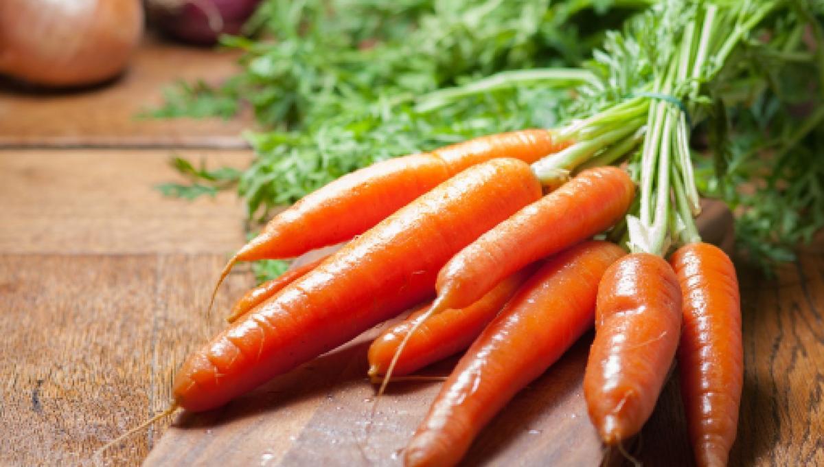 La Zanahorias Estan Llenas De Antioxidantes Protegen La Vista Y La Salud Del Corazon Descubre en el siguiente artículo, para qué es buena la zanahoria, cuáles son sus propiedades medicinales y nutritivas y aprende sencillas recetas caseras para aprovechar al máximo sus. la zanahorias estan llenas de