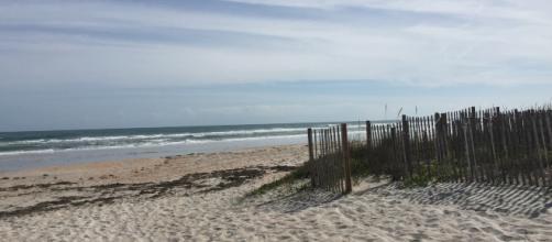Florida, uomo muore mangiato dai batteri carnivori dopo aver fatto il bagno in mare