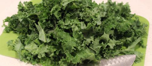 La col rizada pertenece a los vegetales crucíferos , entre los que se cuentan el brócoli y la coliflor