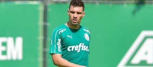 Jogo contra o Inter pode ter sido o último de Moisés no Palmeiras. (Arquivo Blasting News)