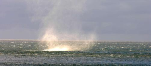 Photo: Whirlpool in the Barents Sea - Norway - all-free-photos.com