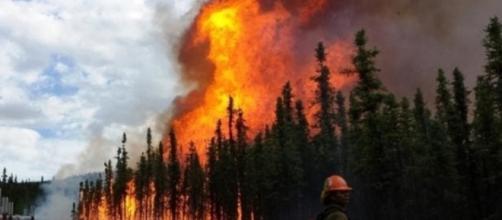 Oltre 100 incendi nell'Artico sono un segno che il mondo cambierà