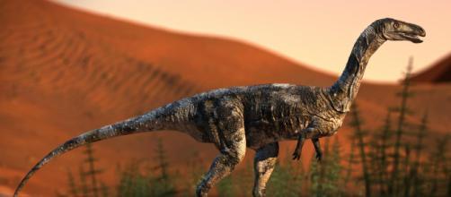Il dinosauro che camminava su un solo dito   Разное - ryb.ru