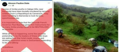 Manipulation des terroristes sécessionnistes au Cameroun via Facebook © Google