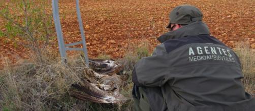 Medio Ambiente solicita más de 6 millones de euros en sanciones a ... - albacetecapital.com