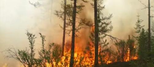 Unprecedented wildfires burn in the Arctic during heatwave. [Image source/Guardian News YouTube video]