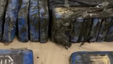 New Zealand: Packages of cocaine lost at sea last year wash up on a beach of Auckland
