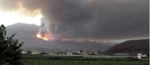 Isole Canarie, incendio devasta Gran Canaria, distrutti mille ettari di bosco, mille le persone evacuate