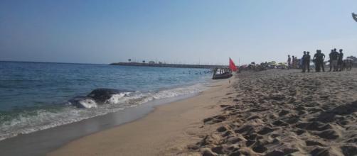 Aparece una ballena muerta en Mataró