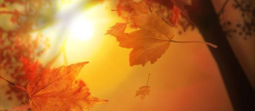 Oroscopo weekend dal 31 agosto al 1° settembre: Ariete sottotono, Acquario geloso