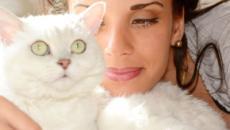 6 choses qu'un chat sait sur son maitre mais qu'il n'avouera jamais