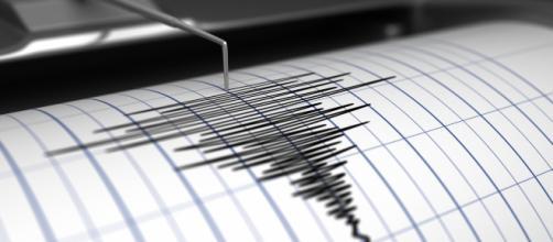Terremoto al largo di Crosia e Rossano.