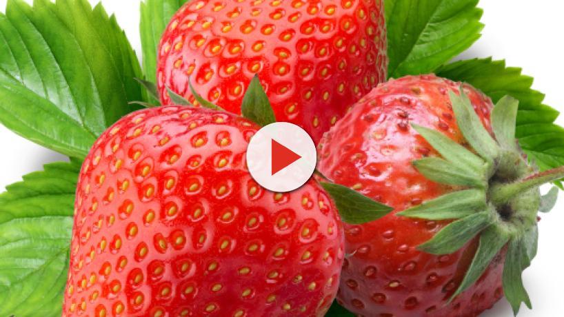 5 beneficios que ofrecen las fresas para la salud gracias a flavonoides y antioxidantes