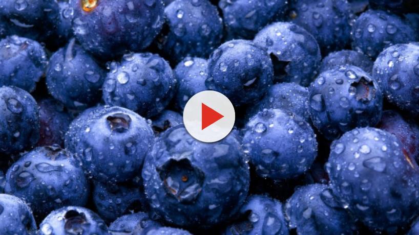 6 beneficios que ofrecen los arándanos gracias a sus propiedades antioxidantes