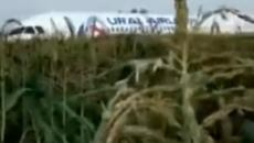 Miraculous escape for 233 passengers and crew of a bird-hit Airbus-321 of Ural Airlines