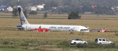 Mosca, stormo di uccelli nei motori: aereo atterra nei campi | tgcom24.mediaset.it