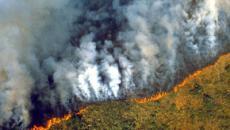 Pray for Amazonia: Amazon rainforest burns