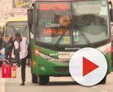 Homem é morto pela Polícia e sequestro de ônibus chega ao fim. (Arquivo Blasting News)