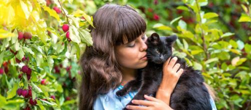 Comment dialoguer avec votre chat ? | Éduquer son chat ... - pinterest.com