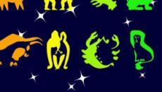 Previsioni astrologiche 24-25 agosto: finanze 'top' per Gemelli, shopping per Acquario