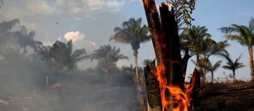 El Amazonas lleva ardiendo más de 15 días.