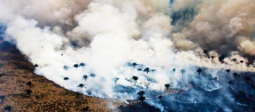 Il terribile incendio che sta devastando la Foresta amazzonica.