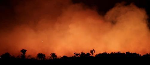 Incêndios na Amazônia têm sido constantes. (Arquivo Blasting News)