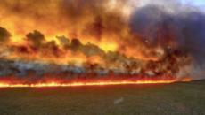 Amazzonia e Siberia in fiamme, il pianeta Terra rischia l'innalzamento delle temperature